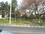 Parcul Curtea Domneasca